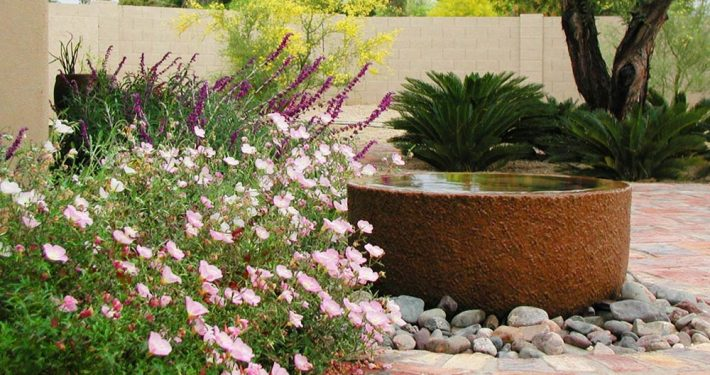 Scottsdale Water Features