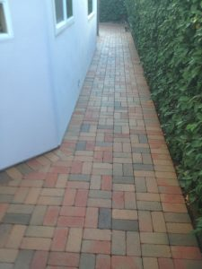 Custom Patio Tile (3)