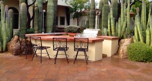 Xeriscape Backyard Kitchen