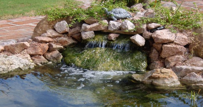 Custom Water Fall In Pond