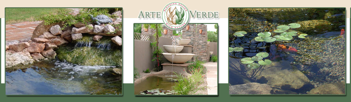 Koi Pond Design and Installation